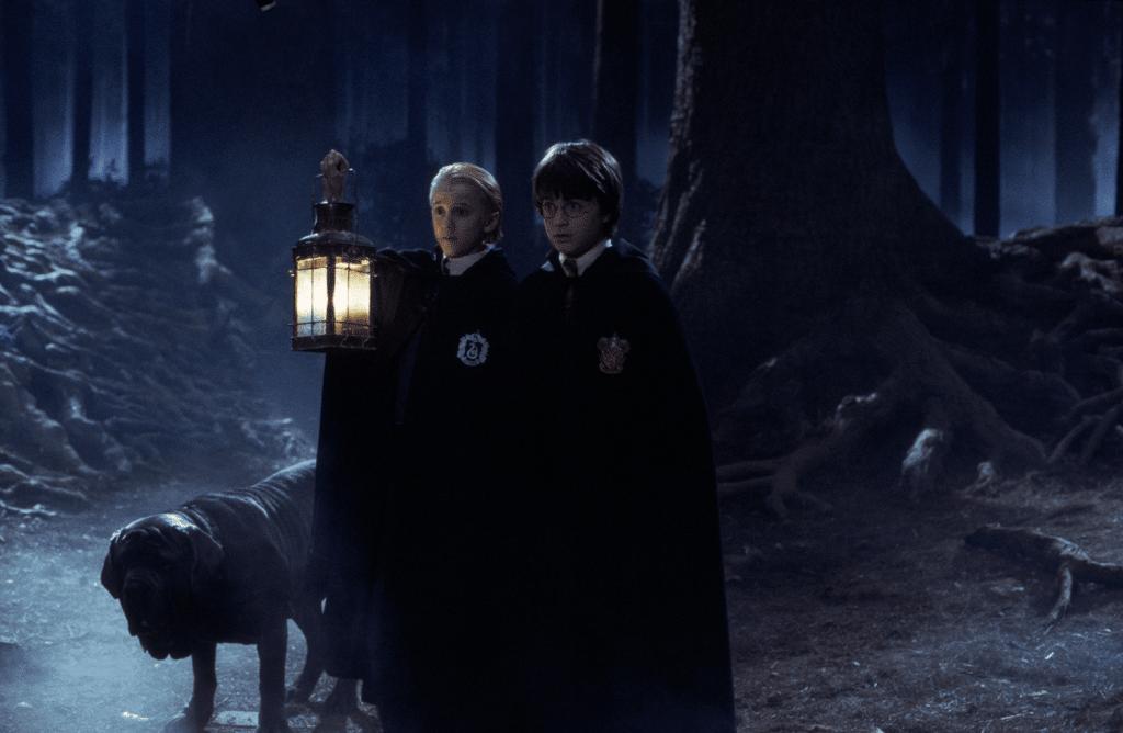 harry-potter-forbidden-forest-fever