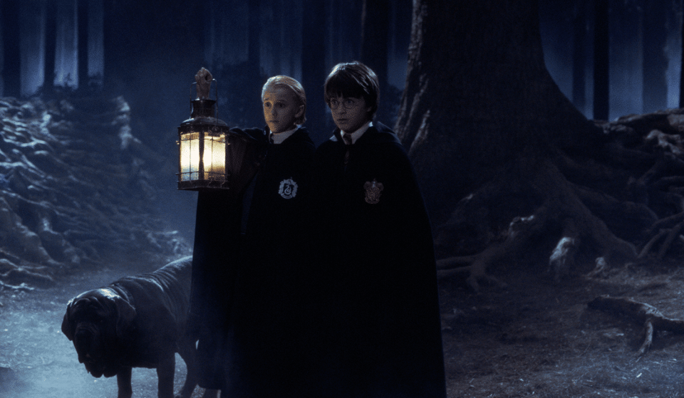 'Harry Potter: A Forbidden Forest Experience' Arrives In The UK This Autumn