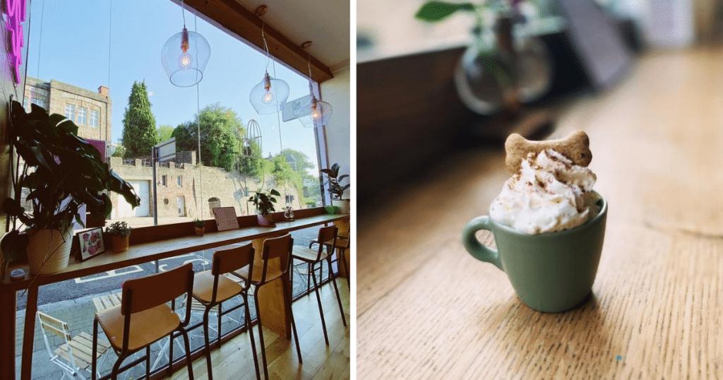 flour-house-puppuccino