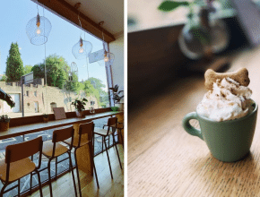 This Bristol Café Hosts Doggie Brunches Every Month, And They're Absolutely Pawfect