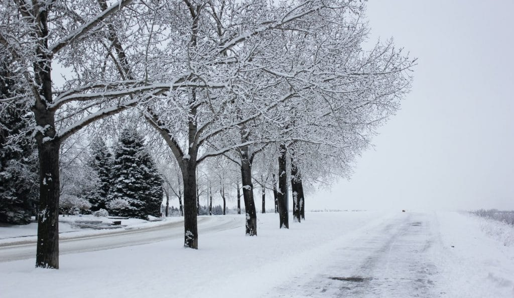 Heavy Snow & Freezing Temperatures To Hit Calgary This Weekend