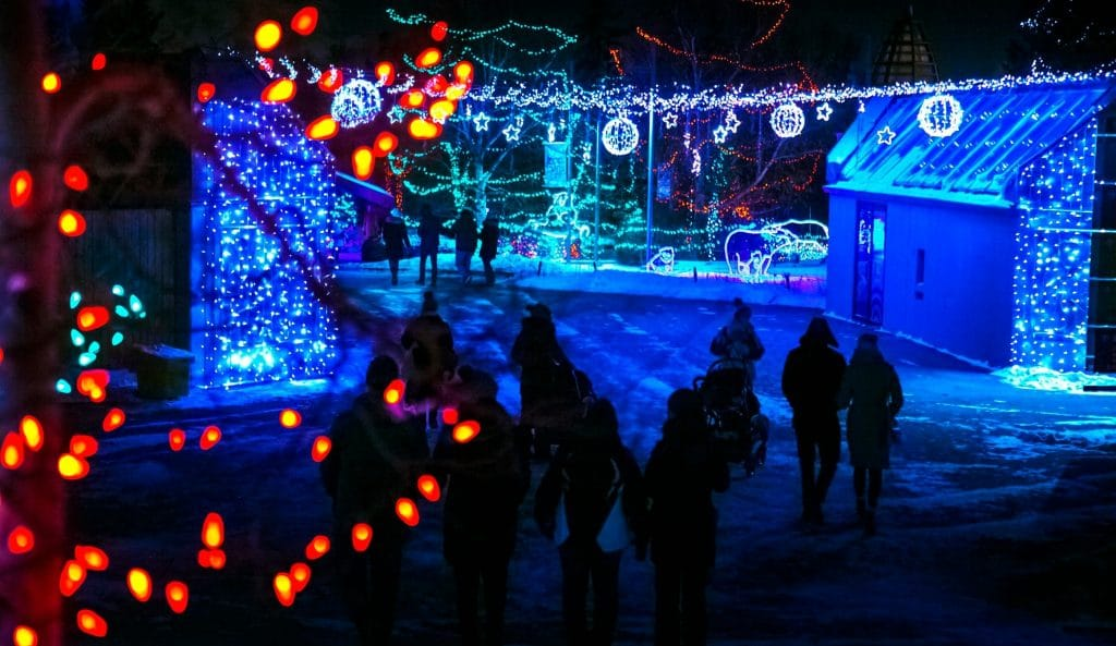 ZOOLIGHTS To Illuminate The Calgary Zoo With Over 2 Million Sparkling Lights