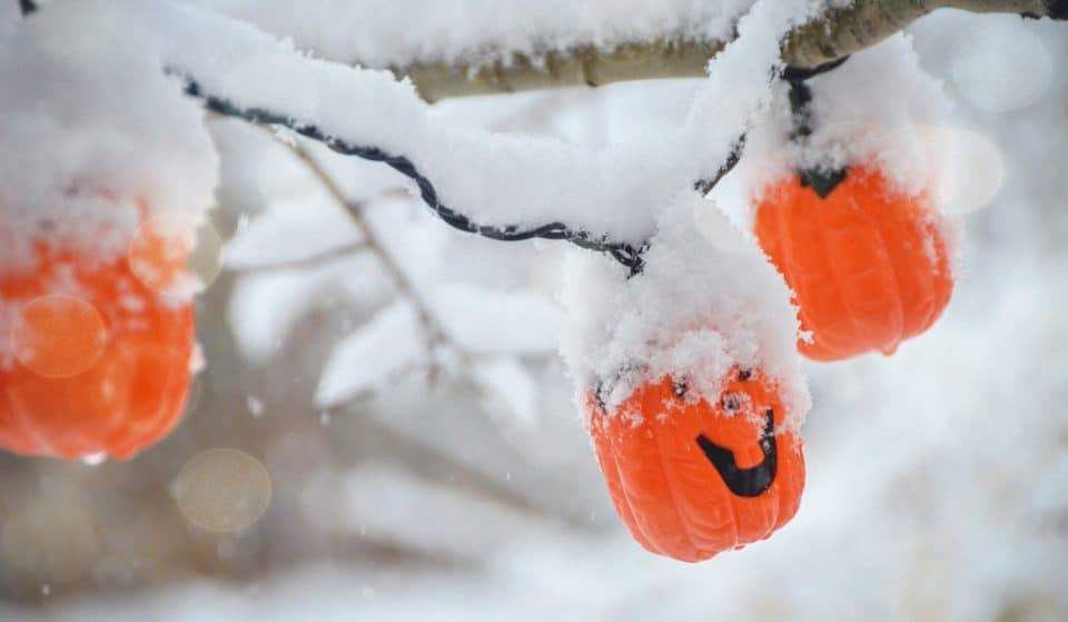 Chicago Suburbs Are Rescheduling Halloween To Avoid Record-Breaking Snow