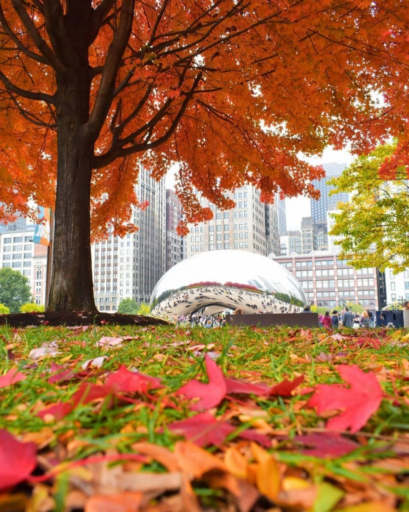 10 Lovely Chicago Parks To Visit While It's Still Nice Out