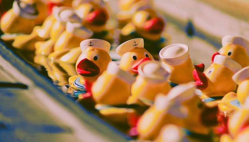 There's An Army Of Hidden Ducks In Chicago We Bet You Had No Idea Existed