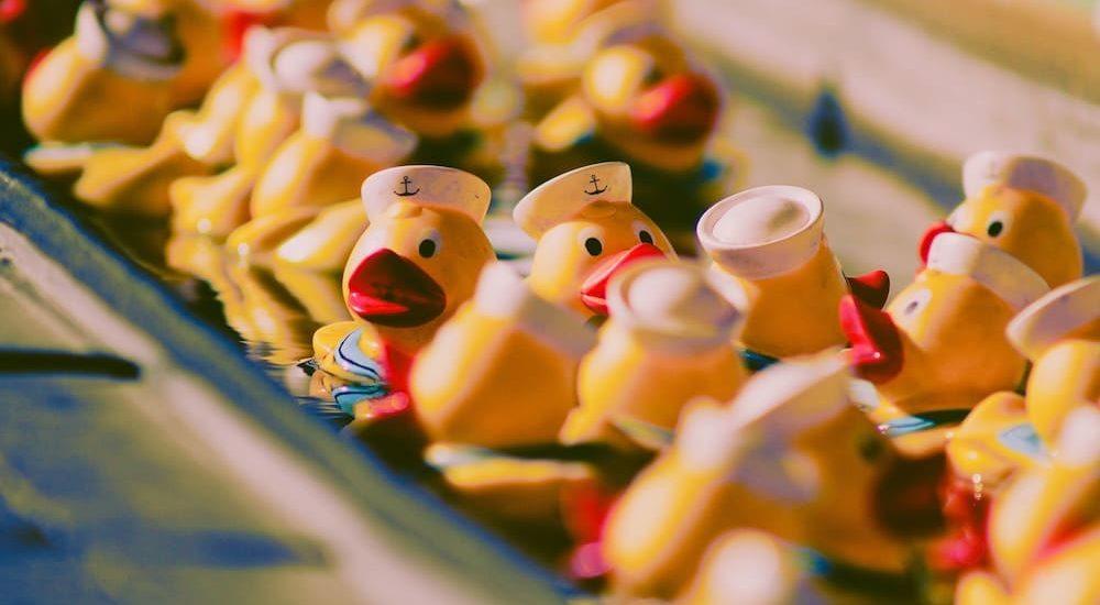 hidden duck army