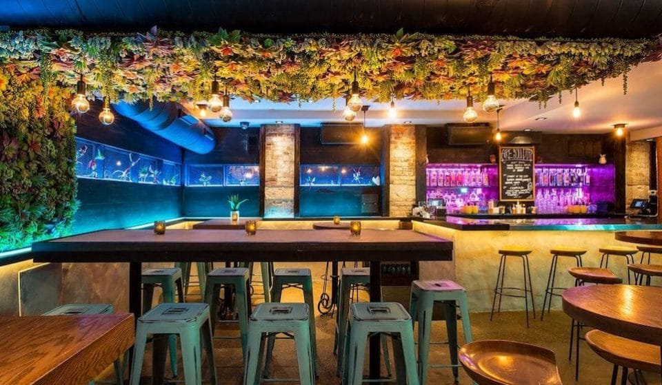 7 Top Secret Chicago Speakeasies You'll Want To Sneak Into This Weekend