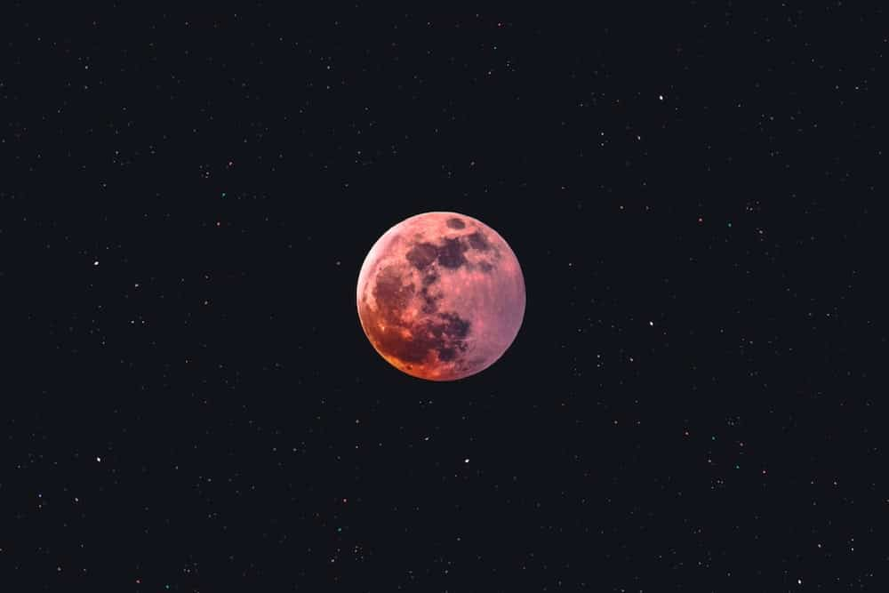 Tonight's Pink Supermoon Will Be The Biggest And Brightest Of The Year!
