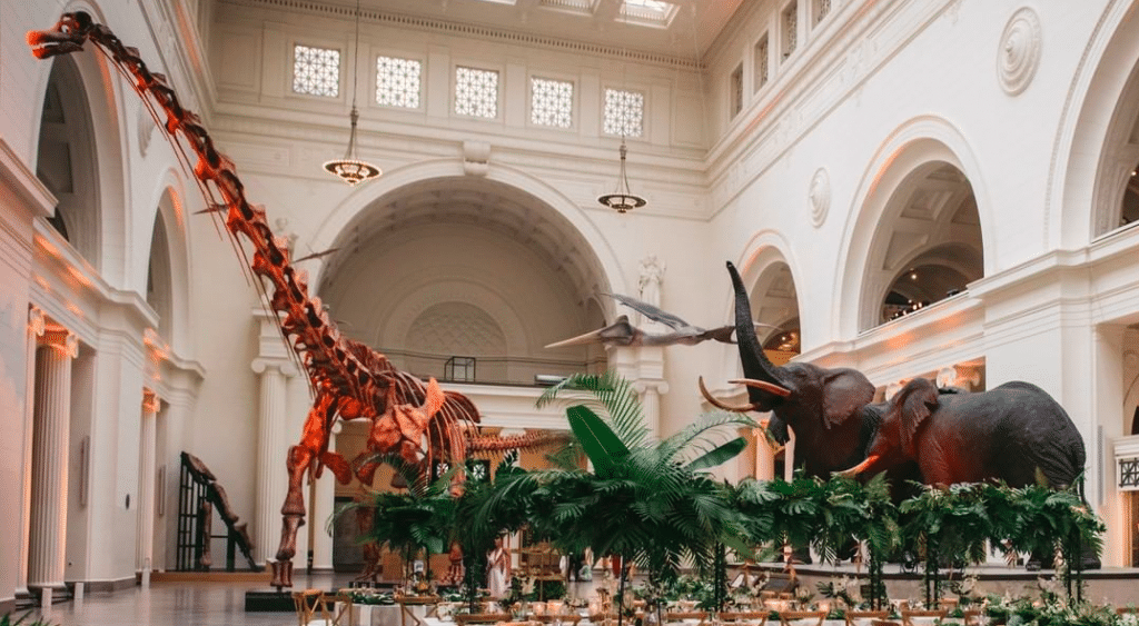 The Field Museum Is Reopening To Members Next Friday With Updated Safety Measures