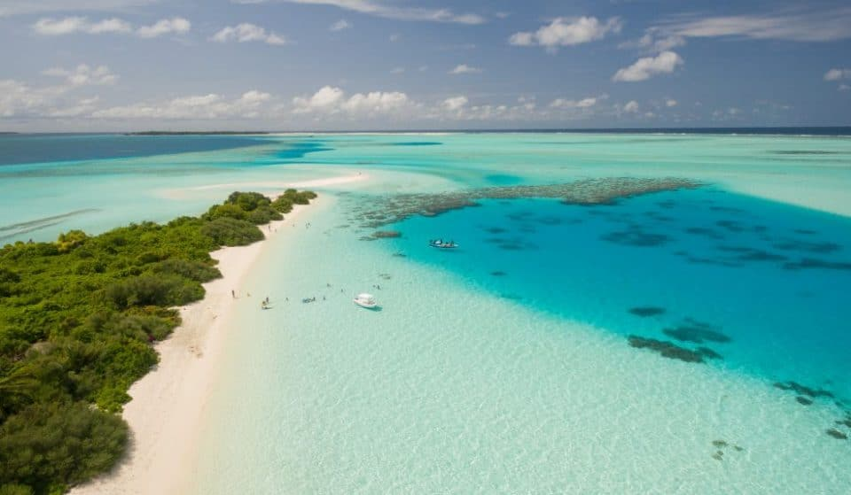 A Resort In The Maldives Is In Need Of A 'Barefoot Bookseller' To Run Their Bookshop