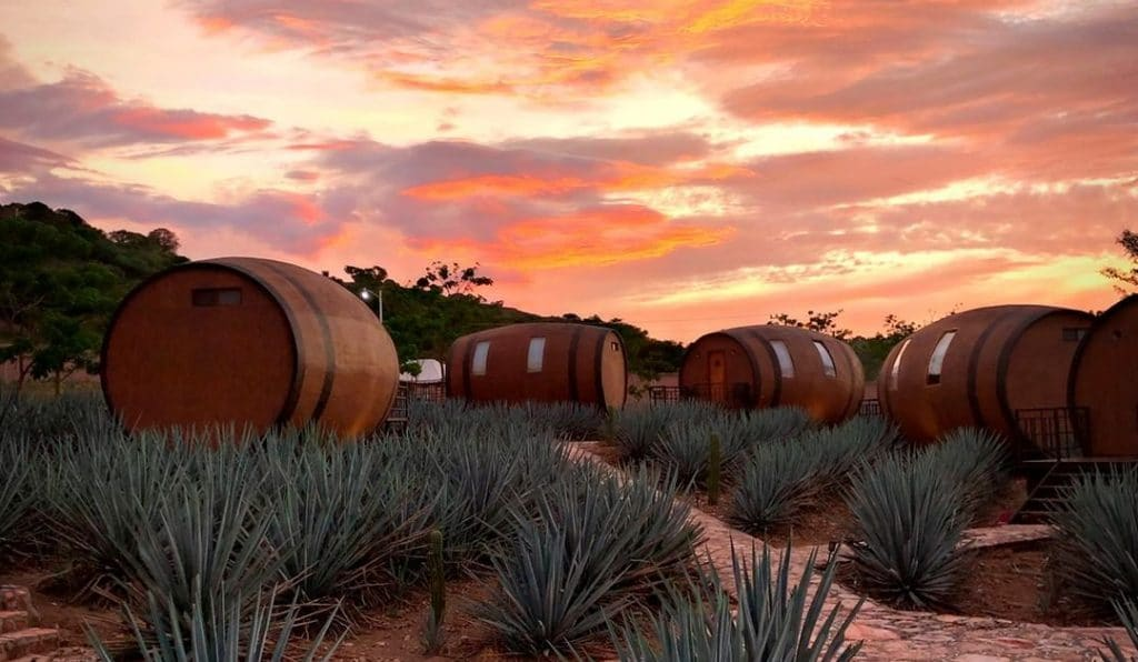 This Hotel In Mexico Lets You Sleep In A Giant Barrel And Drink Tequila Straight From The Source