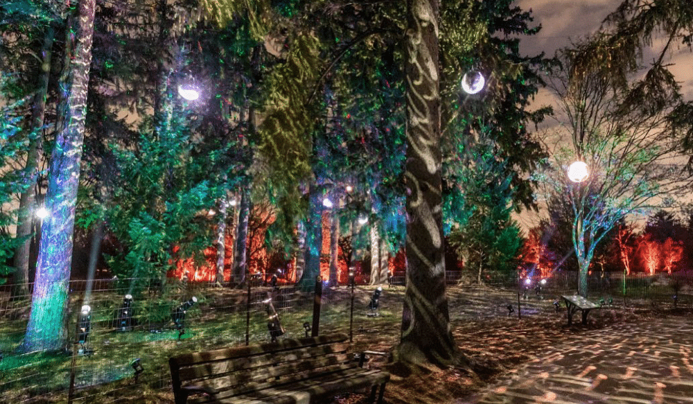 A Dazzling Drive-Thru Tree Lighting Spectacle Is Coming To The Morton Arboretum This Winter