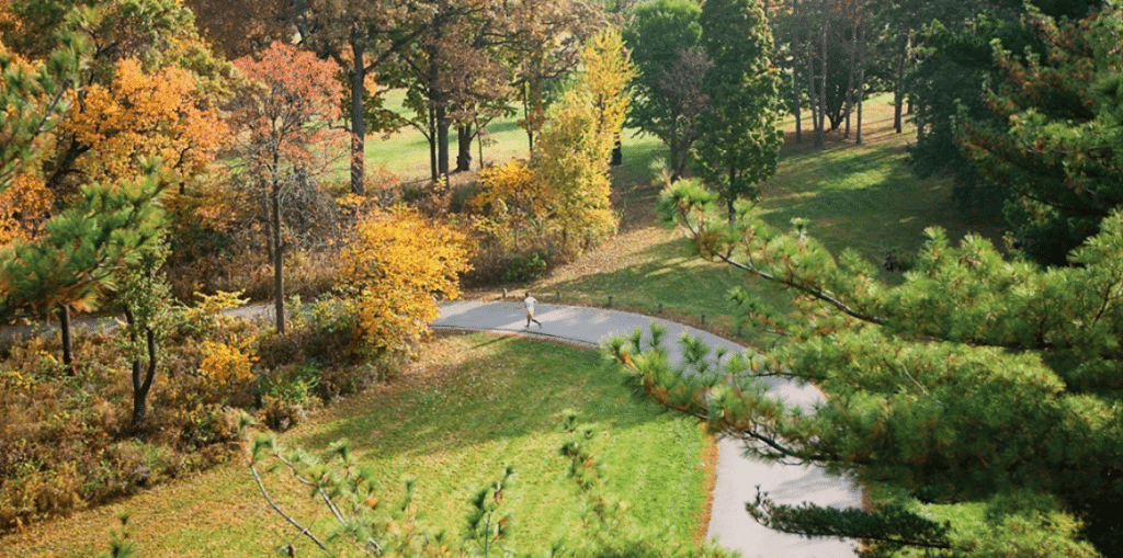 The Morton Arboretum Is Holding A Socially Distant Fall 5k Color Run And Walk This October