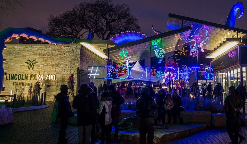Chicago's Beloved ZooLights Event Is Coming Back Bigger & Better Next Month