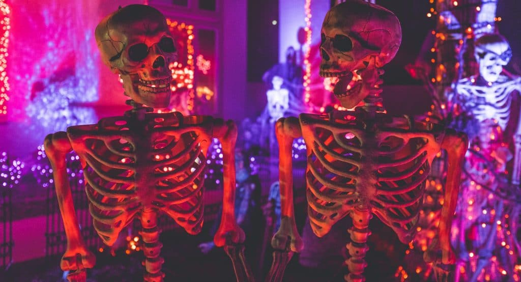 Explore Behind The Screams With The Museum Of Science & Industry's Spooktacular Boo Fest