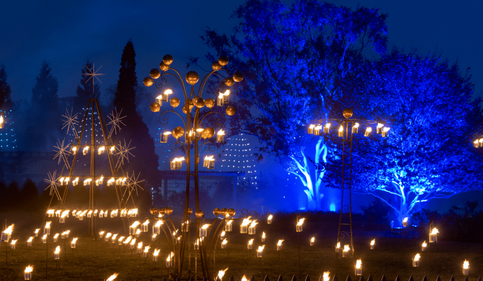 Enter A World Of Light In Chicago Botanic Garden's Magical Multi-Sensory Experience