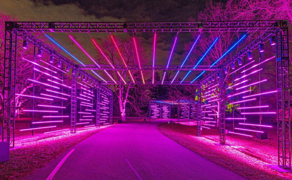 "Morton Arboretum's Laser Show Special ""Illumination: Tree Lights"" Is Now In Full Swing"