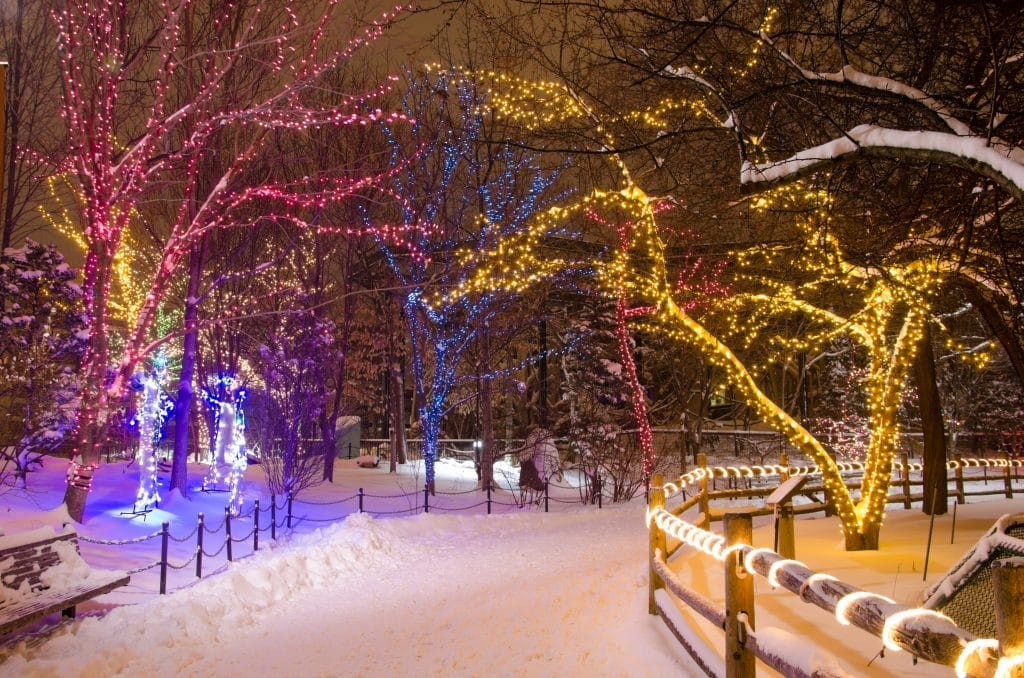 An Arctic Blast Will Hit Chicago On Christmas Eve And Christmas Day