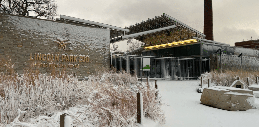 Lincoln Park Zoo Will Emerge From Hibernation And Reopen With Its Annual Beers & Bears Celebration