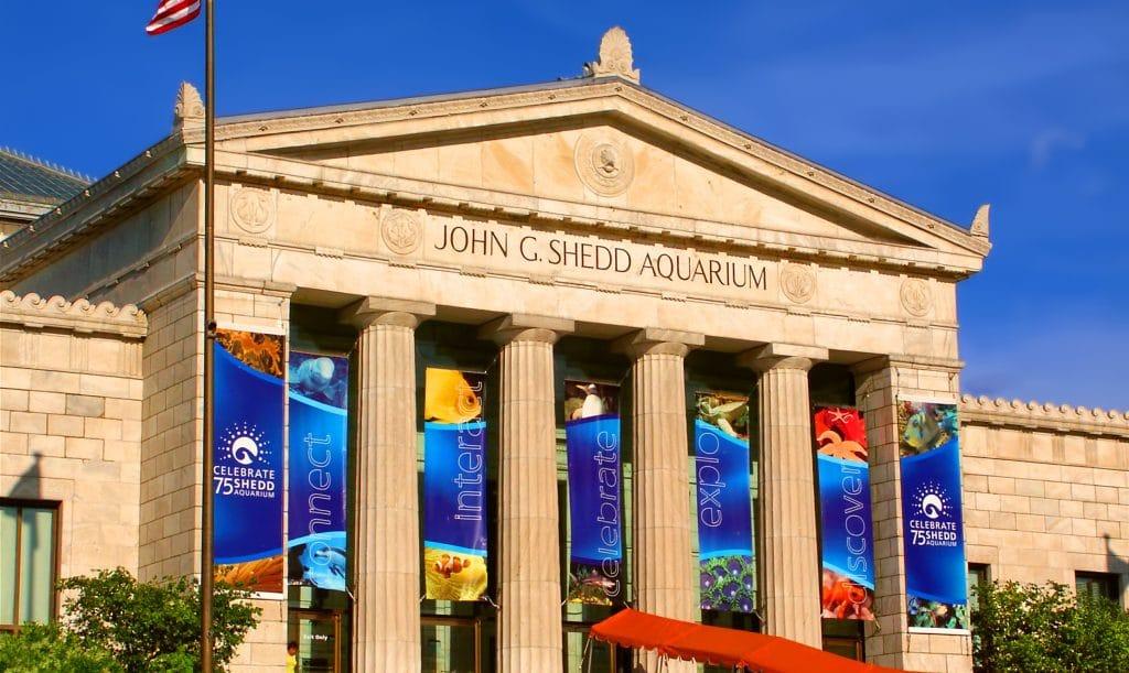 Shedd Aquarium Has Announced Free Mondays, Tuesdays & Wednesdays Throughout September