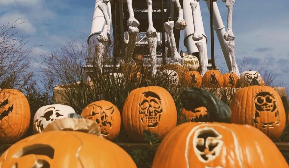 Nearly 1,000 Jack-O'Lanterns Will Decorate Navy Pier This October For A Spectacular Fall Transformation