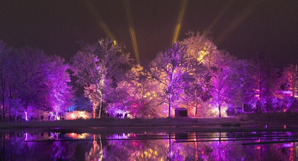 "Morton Arboretum's ""Illumination: Tree Lights"" Walking Experience Is Returning This November"