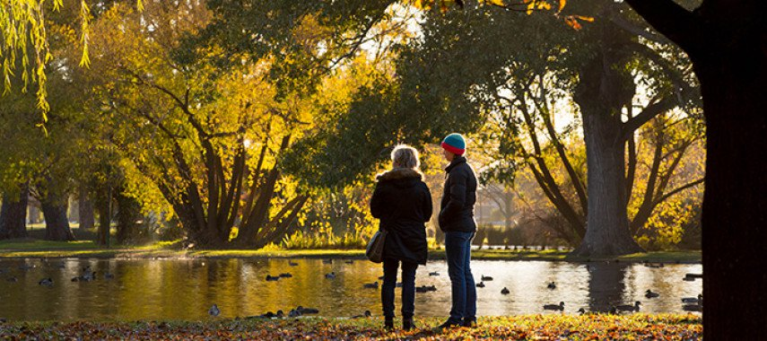 Hagley Park Is The Perfect Christchurch Spot For A (Nearly) Summer Stroll