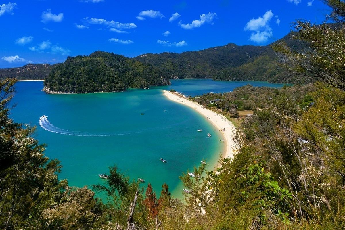 New Zealand Best