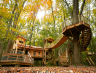 Spend The Night In An Epic Treehouse Village Just Outside Of Cleveland