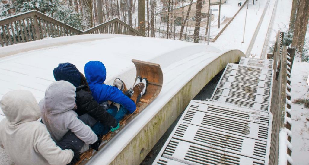 Shoot Down Toboggan Chutes At This Local Winterpark