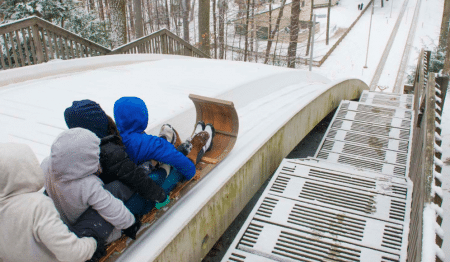 Shoot Down Toboggan Chutes At This Local Winterpark