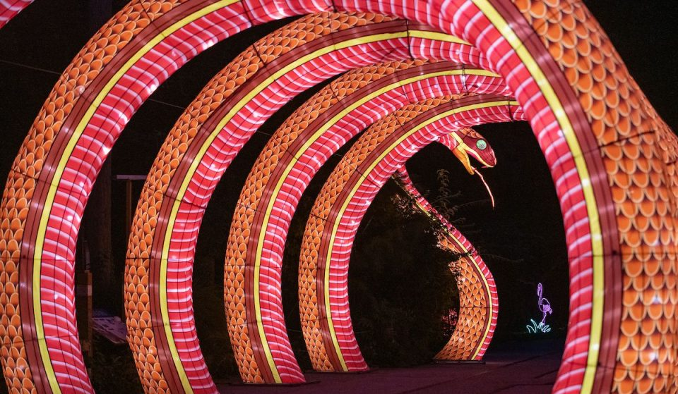 You'll Be Able To See This Stunning Asian Lantern Festival In Cleveland All Throughout September