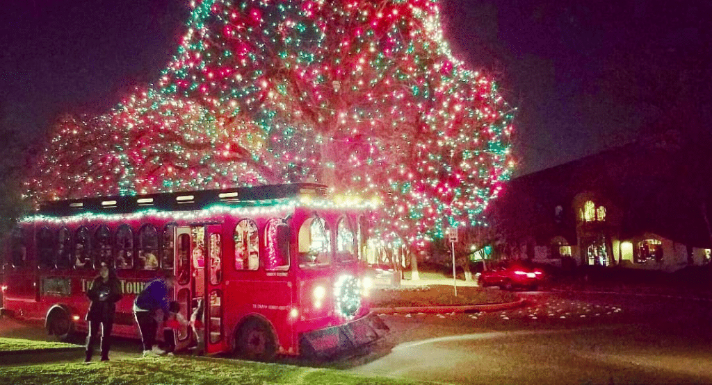 Jingle All The Way On These Holiday Light Trolley Rides