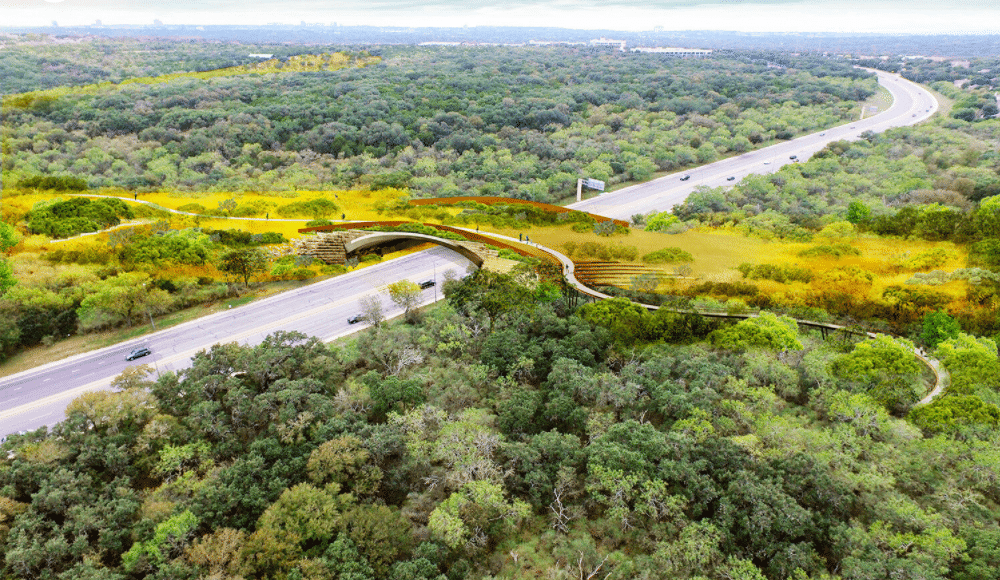 Largest Wildlife & Human Land Bridge In The Country Opens In Texas