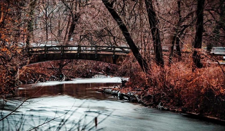 10 Beautiful Shots of Rock Creek Park That Will Make You Want To Get Your Hike On