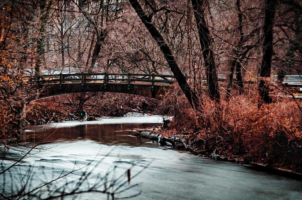 Beautiful Shots of Rock Creek Park