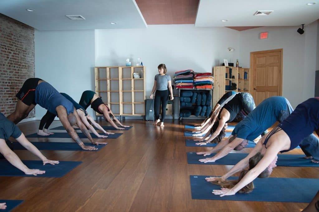 bluebird-yoga-free-classes