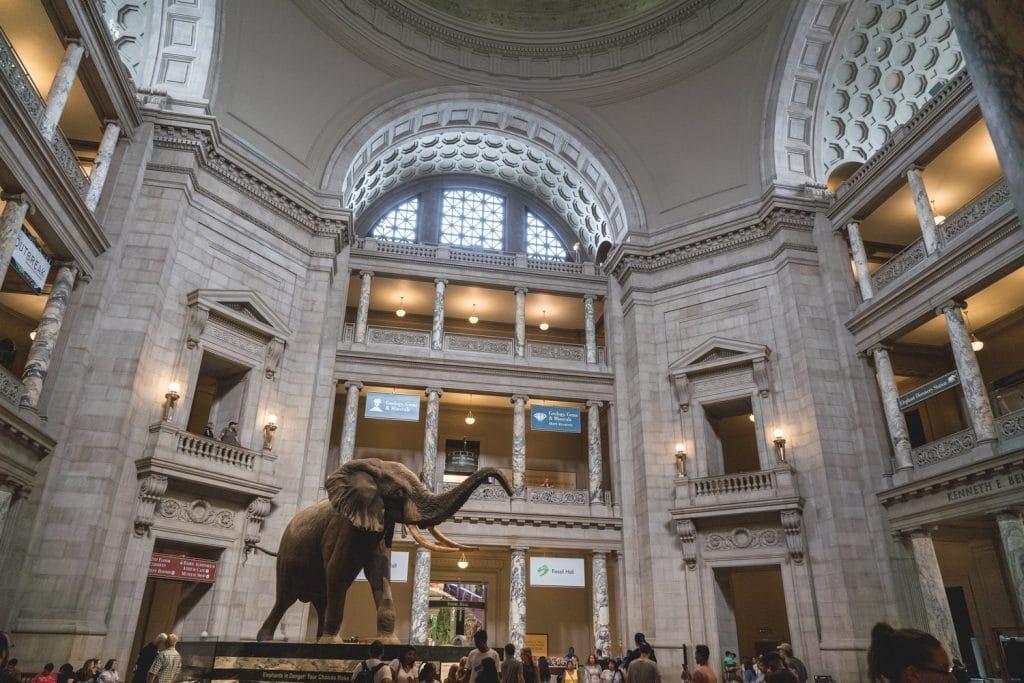 virtual-tours-museums-dc