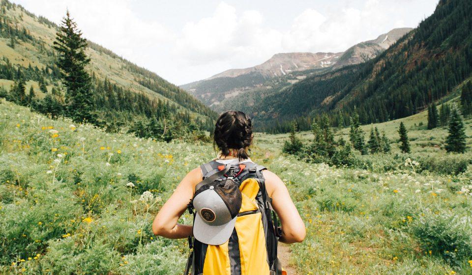 10 Stunning Trails To Go Hiking Around DC