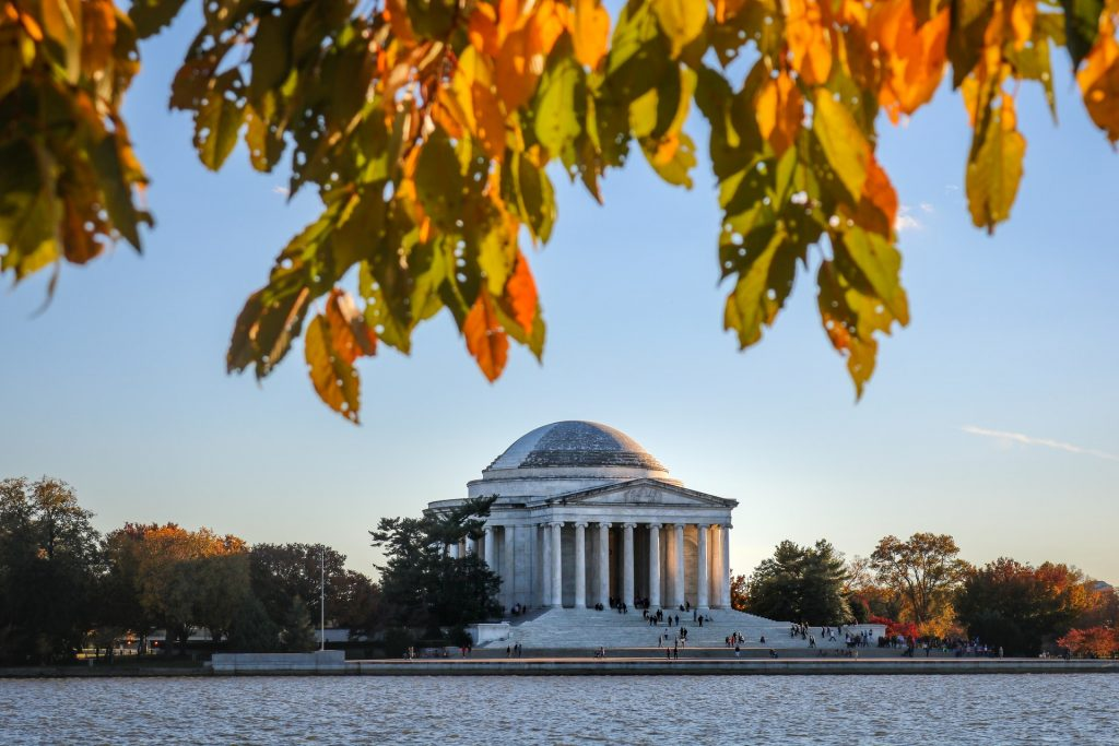 Fall foliage DC