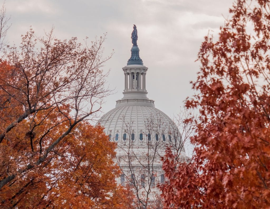 This Awesome Map Shows When Fall Foliage Will Hit Its Peak Around DC