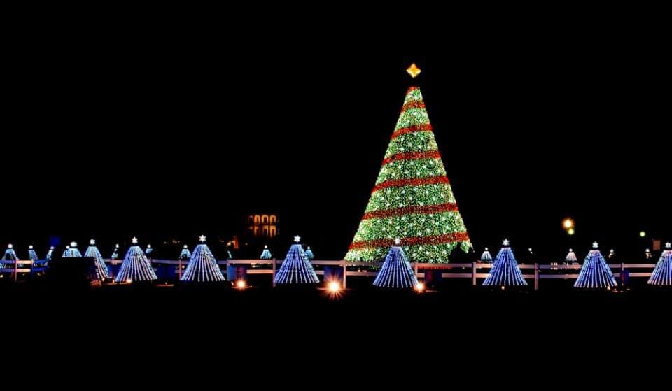 22 Wonderful Things To Do In Washington DC This December