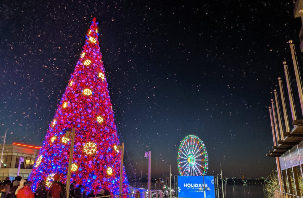 The National Harbor's Tree Is Now Officially Lit For The Holidays