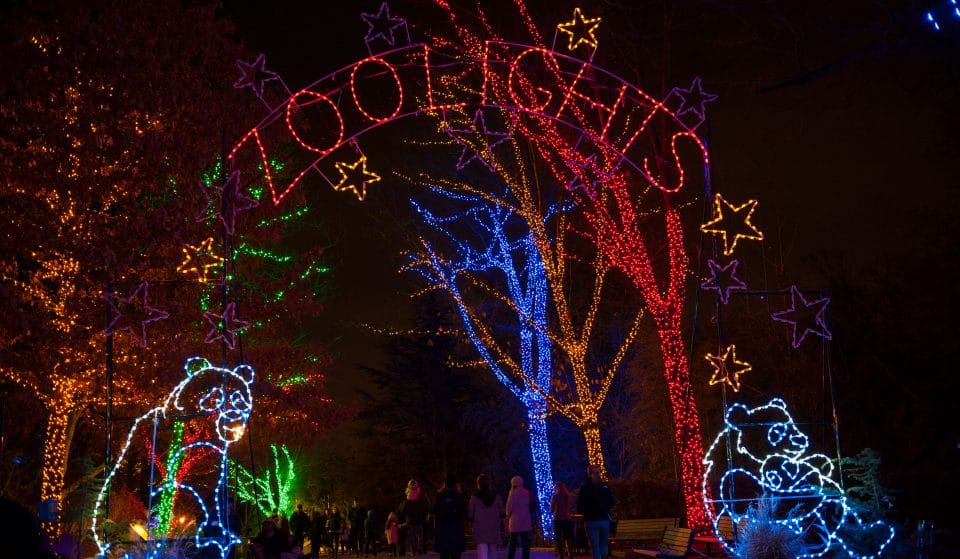 The National Zoo's Holiday Light Show Is Going On The Road This Year