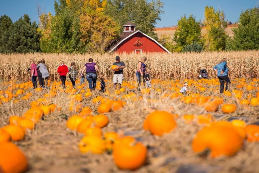 12 Frightening Fall Festivals And Spooky Attractions Around Denver You Won't Want To Miss