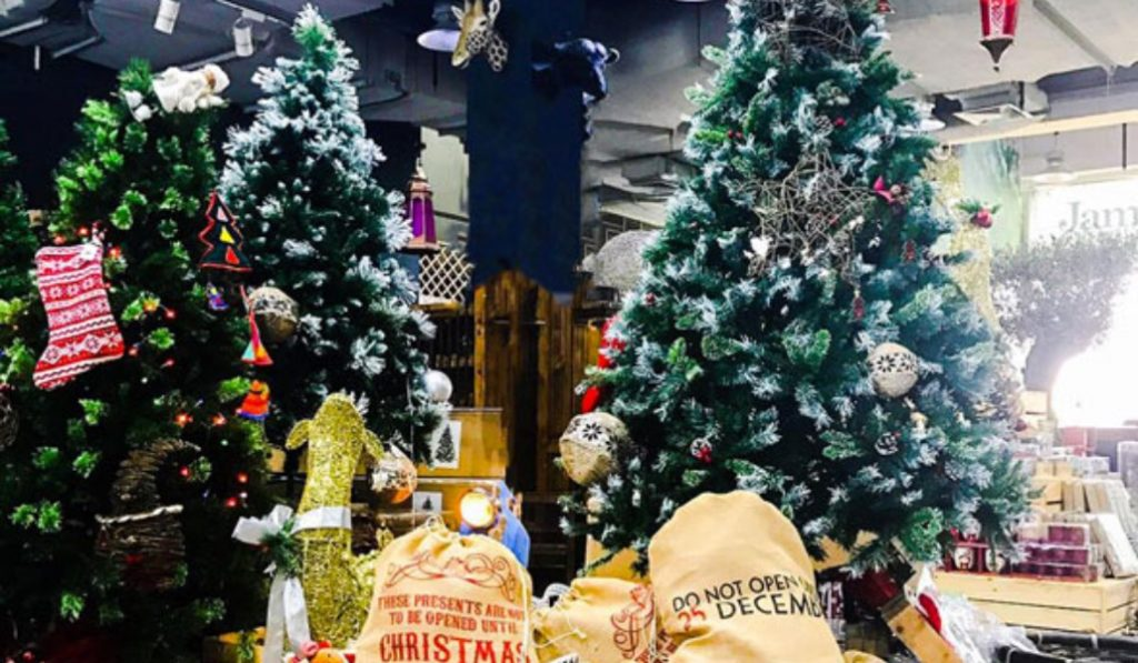 Spinneys have got you covered with finding the perfect Christmas tree