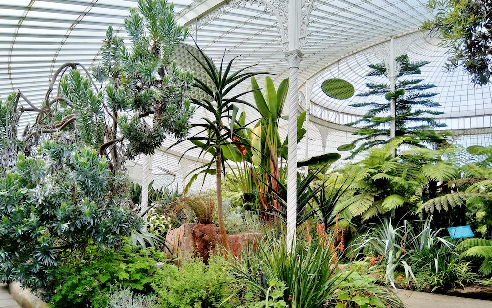 Glasgow's Gorgeous Botanic Gardens Offer A Perfect Escape From The Hustle And Bustle