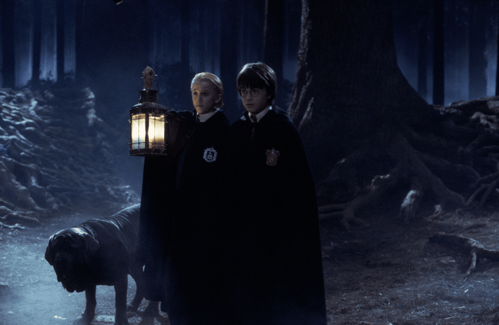 harry-potter-forbidden-forest-experience