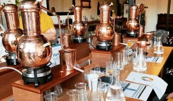 This Gin Distillery Masterclass Will Have You Leaving With 500ml Of Your Own Gin Creation