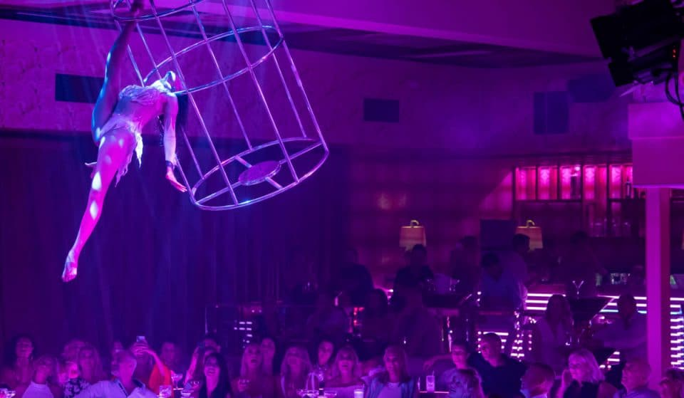 Flock To The Pink Flamingo In Broadbeach And Be Blown Away By These Four Phenomenal Shows